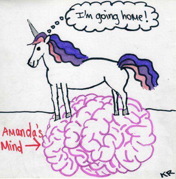 unicorn essay