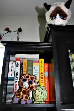 BookPorngrumpycat