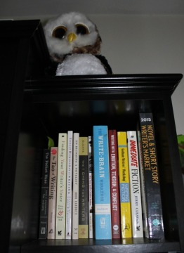 BookPornowlshelf