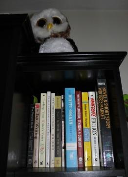 BookPornowlshelf