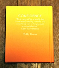 book-haul-2017-confidence-book-back-cover