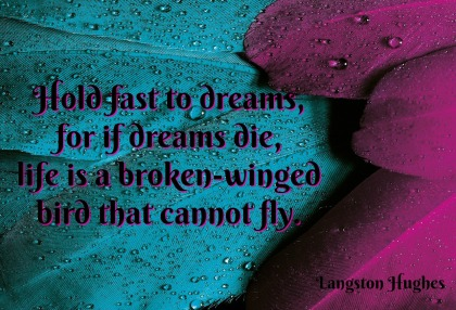 feathers-langston-hughes-quote-broken-wing