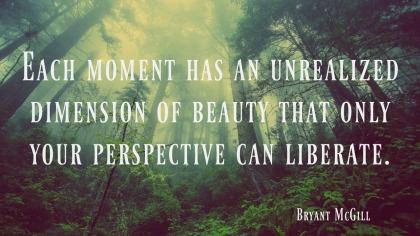 Bryant McGrill quote