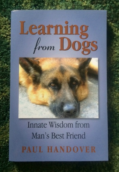 learning from dogs