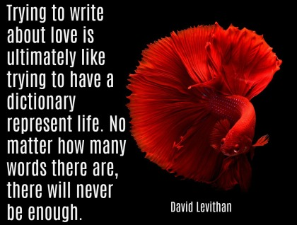 Monday Morning Quote Love David Levithan
